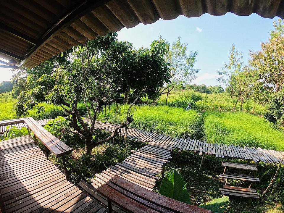 Suan i por สวนไอปอ