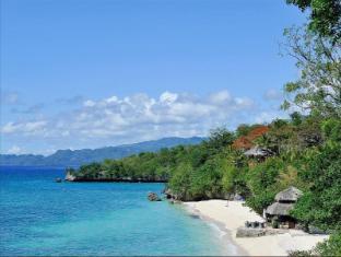 Alegre Beach Resort Cebu City