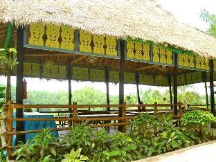 picture 4 of Damires Hills Tierra Verde Leisure Farm