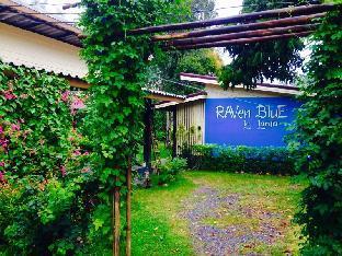 レイブン ブルー ホテル Raven Blue Hotel