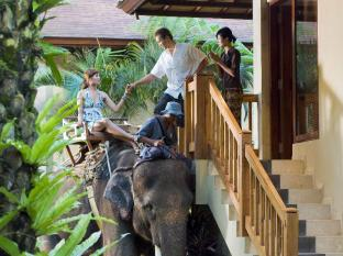 Elephant Safari Park Lodge Hotel Bali - Elephant Chauffeur Service