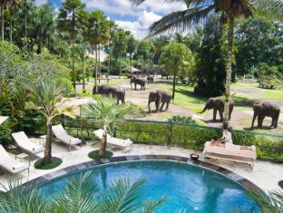 Elephant Safari Park Lodge Hotel Bali - Overlooking Swimming Pool and Elephant Park