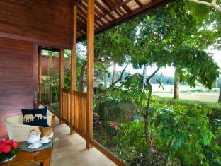 Elephant Safari Park Lodge Hotel Bali - Paddy View terrace