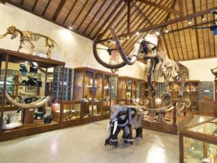 Elephant Safari Park Lodge Hotel Bali - Museum