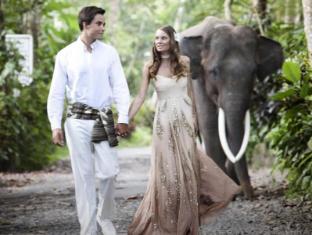 Elephant Safari Park Lodge Hotel Bali - Garden