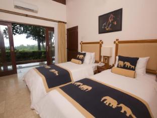 Elephant Safari Park Lodge Hotel Bali - Paddy View Room
