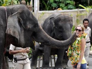 Mara River Safari Lodge Hotel Bali - Elephant Show