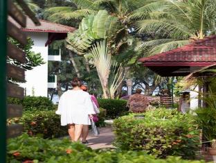 Amora Beach Resort Phuket - Zahrada