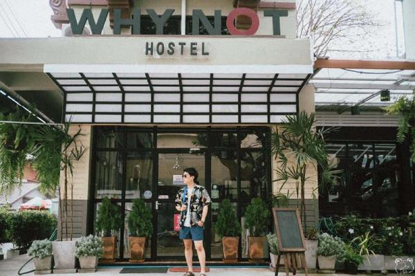 Why Not Hostel Chiang Mai