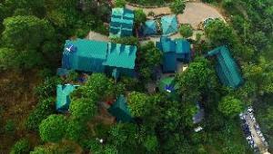 위니즈 홀리데이 인  (Winnies Holiday Inn)