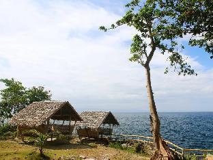 picture 3 of Molave Cove Resort