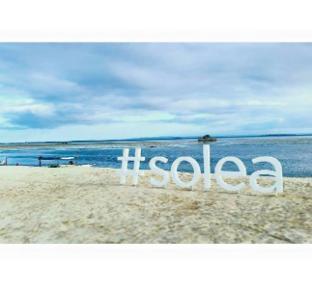 picture 3 of Solea Mactan Resort