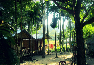 Фото отеля Pano Eco Resort-Havelock Island