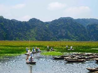 %name Ninh Binh Nature Homestay Ninh Binh