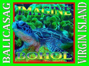 picture 1 of IMAGINE-BOHOL