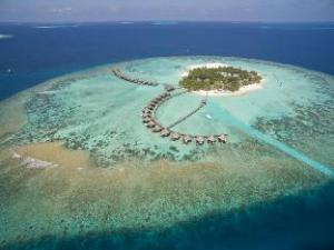 關於馬爾代夫藍色美人蕉島Spa度假村 (Thulhagiri Island Resort & Spa Maldives)