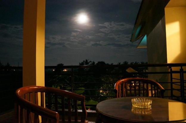 Puri12 Bed and breakfast - ricefield view