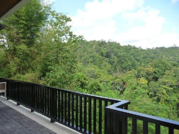 1BR Villa Overlooking Jungle is Incredible.