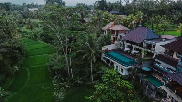 6BR Luxury Pool Villa & Breakfast @Ubud