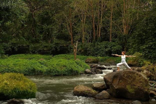 Jungle View 1BR at Ubud