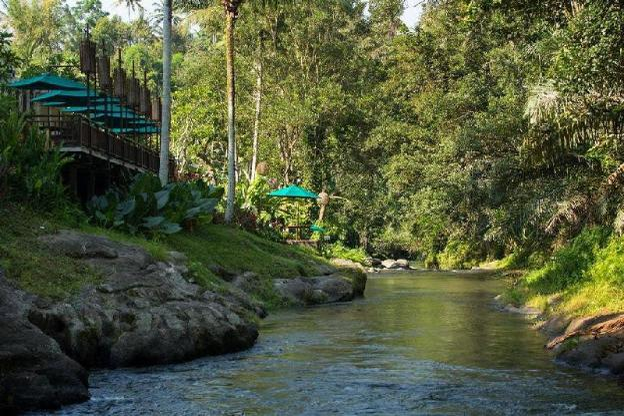 Villa 1BR Private Pool at Ubud