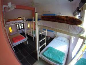 Bunkyard Backpackers Hostel