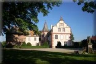 Le Chateau D'Osthoffen