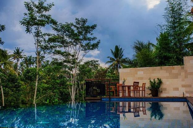 Luxury Private Infinity Pool with Jungle View