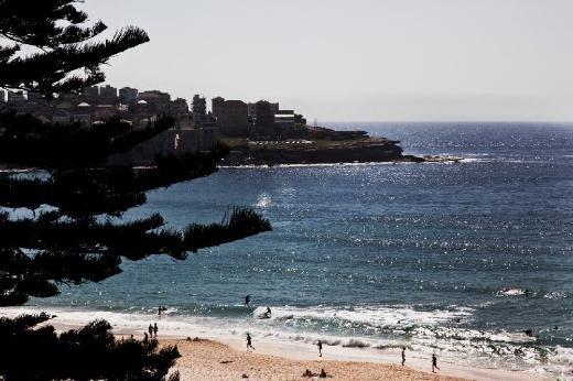 Bondi Beach Stunning Views