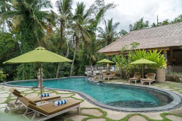 Divine Rice + Jungle View + Breakfast @Ubud