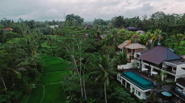 6BR Jungle Villa complete with Pool & Kitchen@Ubud
