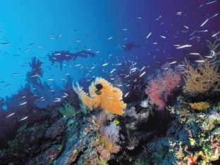 At Water's Edge Resort Islas Whitsunday - Alrededores