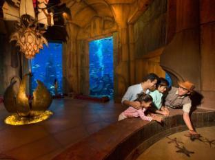 Atlantis The Palm Dubai Dubai - Sports and Activities
