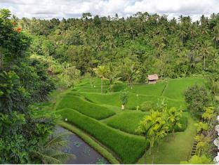 Komaneka at Bisma Ubud Bali - View
