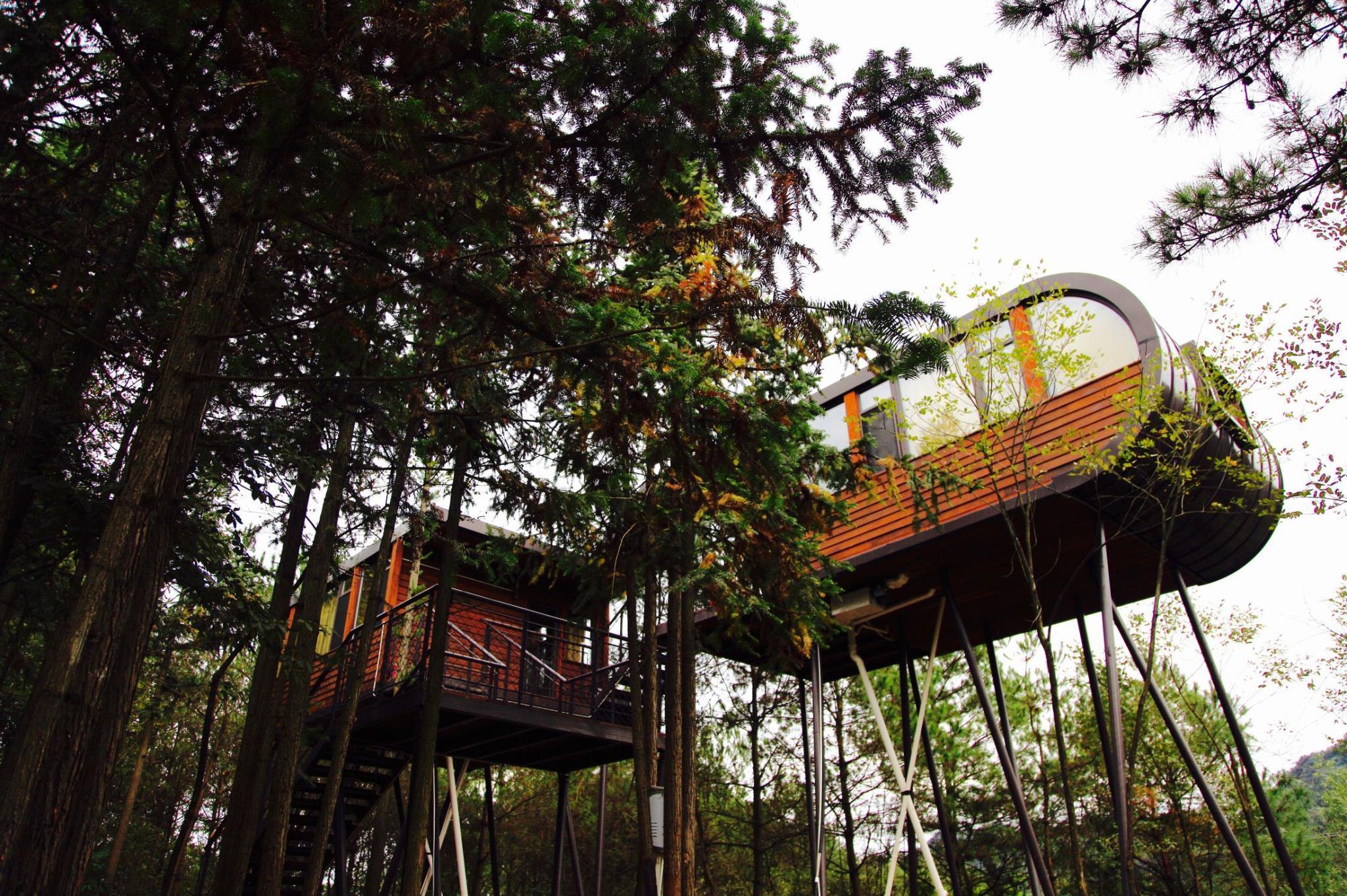 ZYJ Treehouse Land Huangshan Qiyun