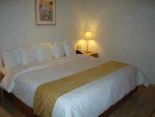 Hotel Plaza Florencia Mexico City - Guest Room