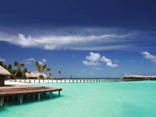 /ru-ru/constance-halaveli/hotel/maldives-islands-mv.html?asq=yiT5H8wmqtSuv3kpqodbCVThnp5yKYbUSolEpOFahd%2bMZcEcW9GDlnnUSZ%2f9tcbj