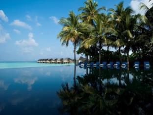 The Sun Siyam Iru Fushi Luxury Resort Maldives Islands - Infinity Couples Pool