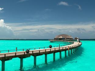 /nb-no/the-sun-siyam-iru-fushi-luxury-resort/hotel/maldives-islands-mv.html?asq=jGXBHFvRg5Z51Emf%2fbXG4w%3d%3d