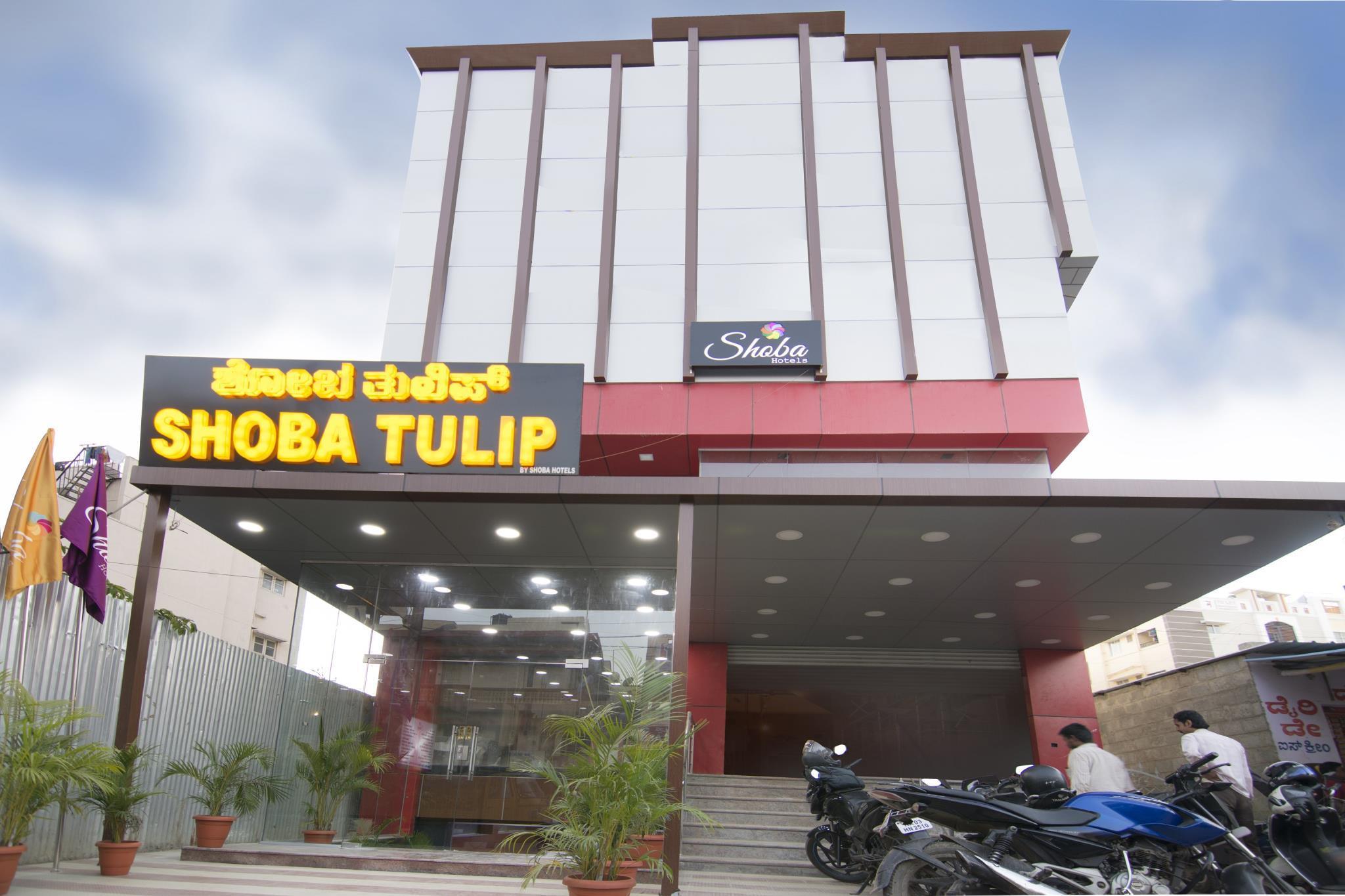 Shoba Tulip