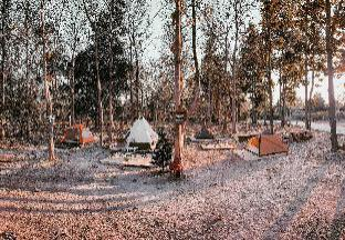 [プレー]バンガロー(8m2)| 1ベッドルーム/0バスルーム The Godung 369 Alien Teak Woods Magic Camping