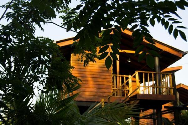 Sigiriya Village Tree House Sigiriya Sri Lanka Great