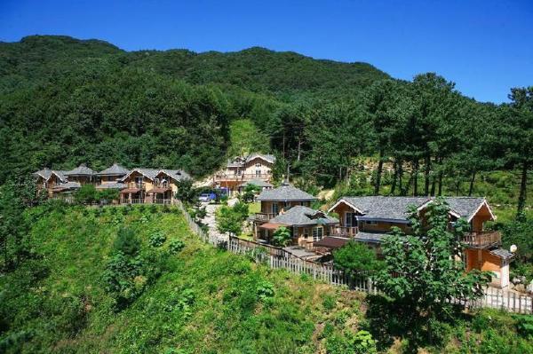 Bluemoon Pension Gapyeong-gun