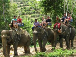Ancient Realm Resort and Spa Koh Lanta - Elephant Trekking Nearby