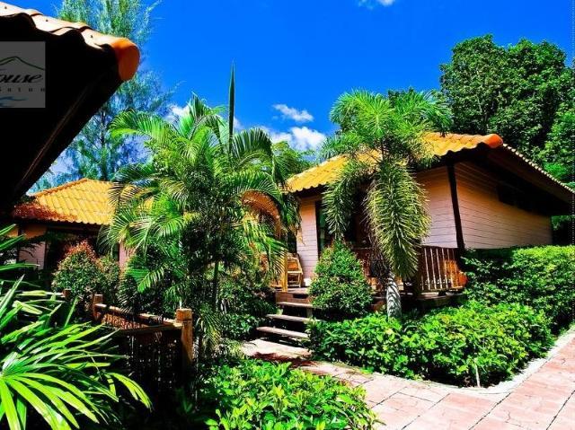ริชชี่ เฮาส์ รีสอร์ท – Ricci House Resort