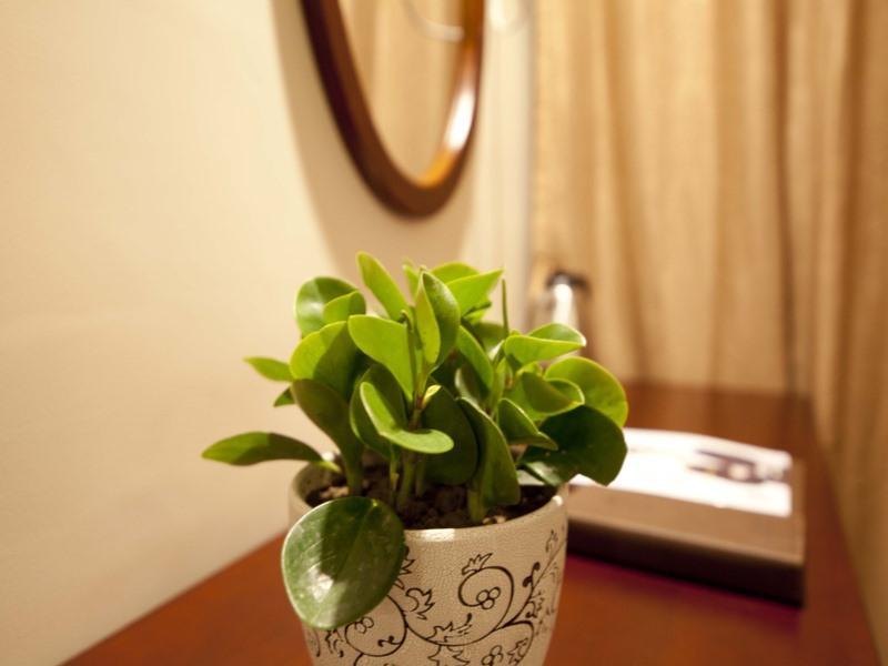 GreenTree Inn Suzhou Dangshan Dayukou Express Hotel