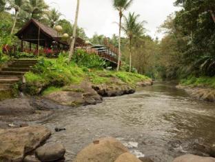 The Samaya Ubud Villas Bali - View