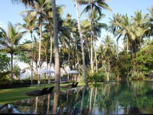 Kelapa Retreat and Spa Hotel Bali Bali - pool