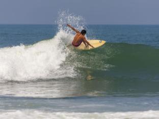 Kelapa Retreat and Spa Hotel Bali Bali - surfing