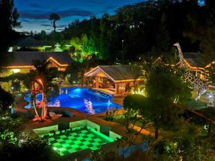 /deep-forest-garden-inn/hotel/puerto-princesa-city-ph.html?asq=jGXBHFvRg5Z51Emf%2fbXG4w%3d%3d